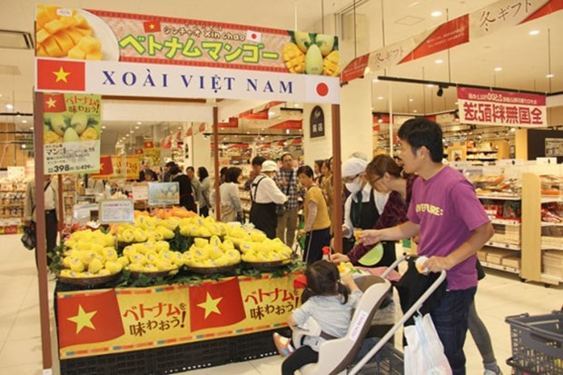 Quality, price key to conquering Japan: experts hinh anh 1