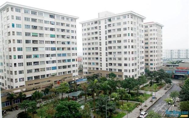 Social housing meets 28 percent of workers' demand hinh anh 1