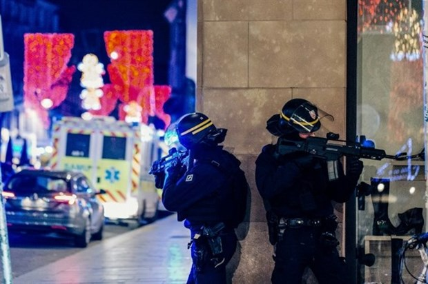 No Vietnamese citizen killed or injured in France's Strasbourg attack hinh anh 1