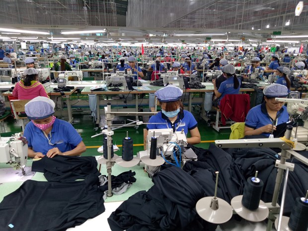 Garment-textile export turnover sees highest growth in three years hinh anh 1