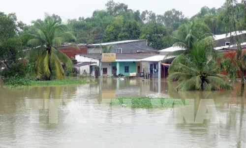 Torrential rains wreak havoc on Quang Nam hinh anh 1