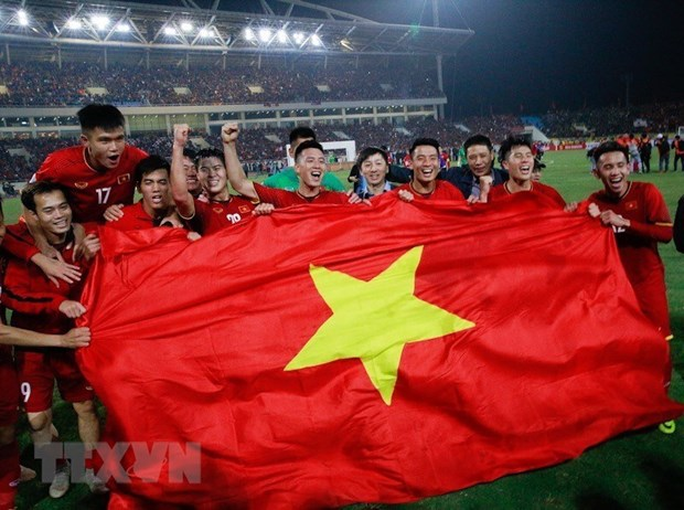 Malaysian media comment on Vietnam's football victory hinh anh 1