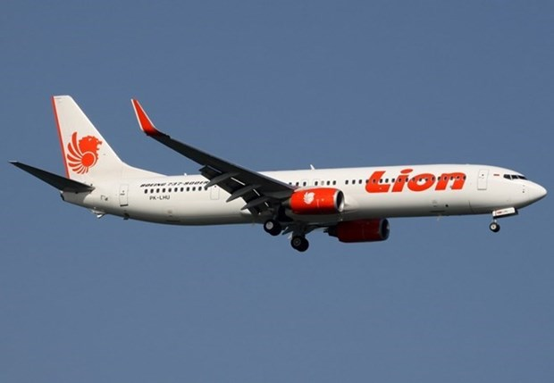 Lion Air to resume search for victims of Indonesia crash hinh anh 1