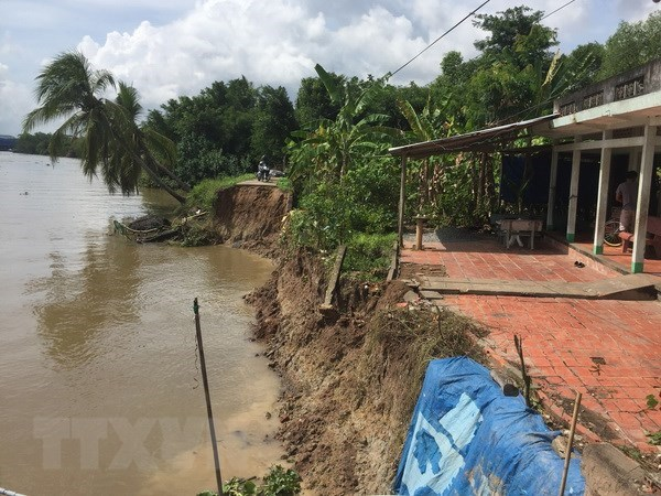 Mekong Delta needs ecosystem-based solutions to climate change hinh anh 1