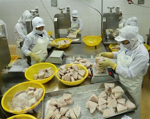 Vietnam moves to develop responsible fishery industry hinh anh 1