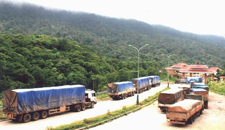Laos' exports expected to continue rising in 2019 hinh anh 1