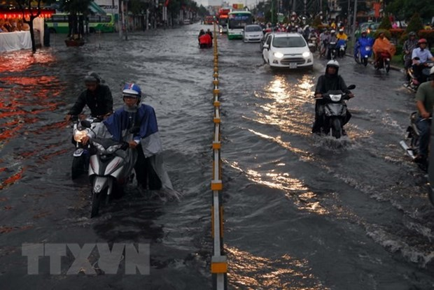 HCM City to resolve flooding problems by 2020 hinh anh 1