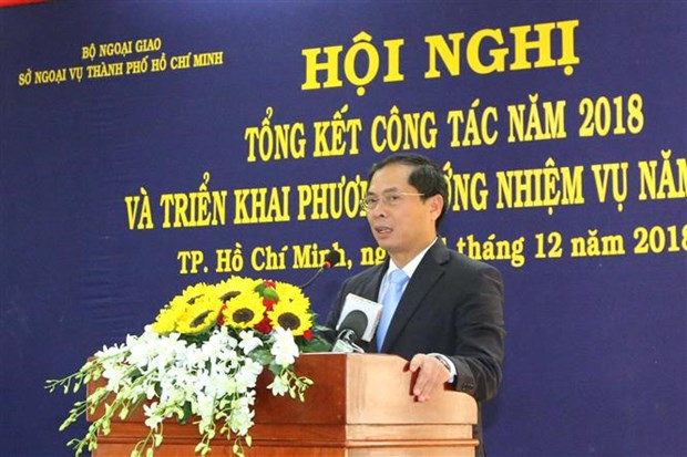HCM City reviews foreign activities in 2018 hinh anh 1