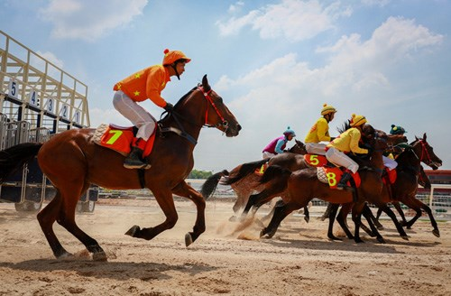 Horse racing course added into Hanoi's planning hinh anh 1