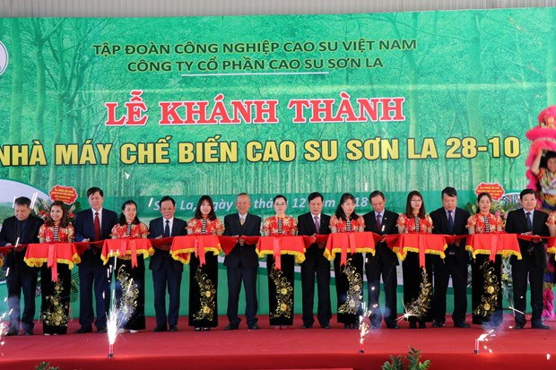 Rubber latex processing plant inaugurated in Son La hinh anh 1