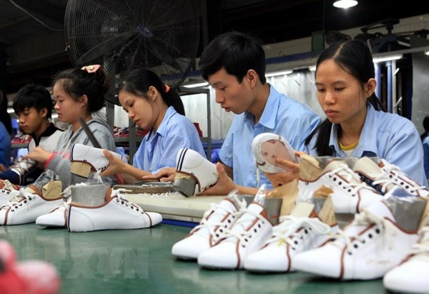 Footwear, bag exports estimated at 19.5 billion USD this year hinh anh 1