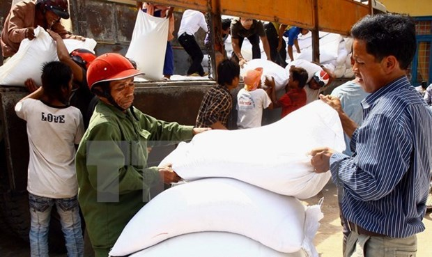 Over 120,000 tonnes of rice sent as relief to needy localities hinh anh 1