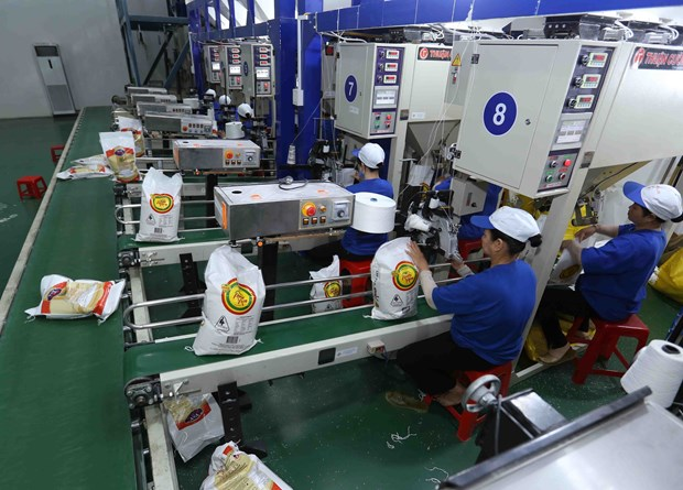 HCM City posts 7.8-percent growth in overseas shipments hinh anh 1