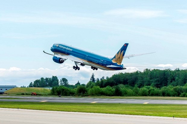 Vietnam Airlines, Jetstar Pacific add 120,000 seats for New Year holiday hinh anh 1