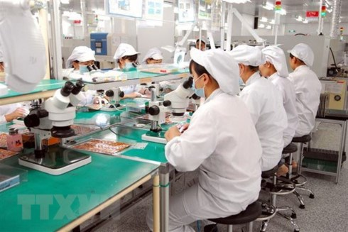 Southern province attracts large-scale investment projects hinh anh 1