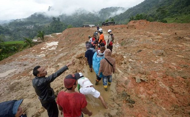 Two killed, 41 missing in landslide in Indonesia hinh anh 1