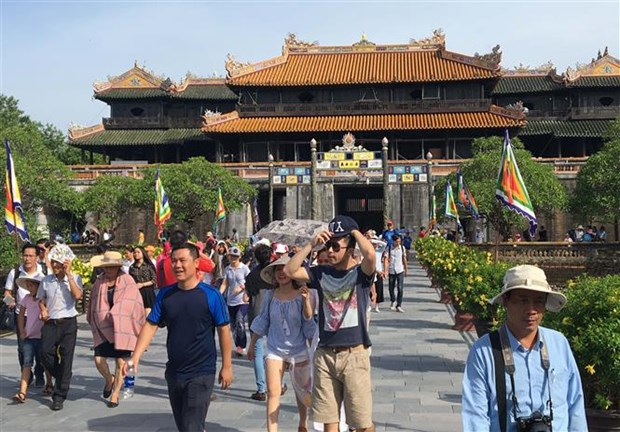 Tourist arrivals surge during 2019 New Year holidays hinh anh 1