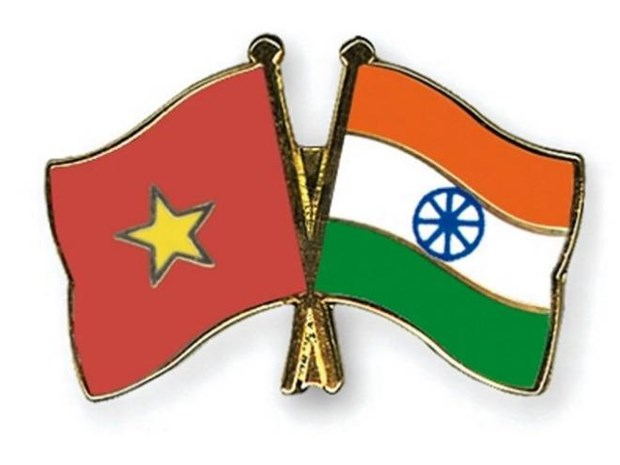 Indian Technical and Economic Cooperation Day held in Hai Phong hinh anh 1