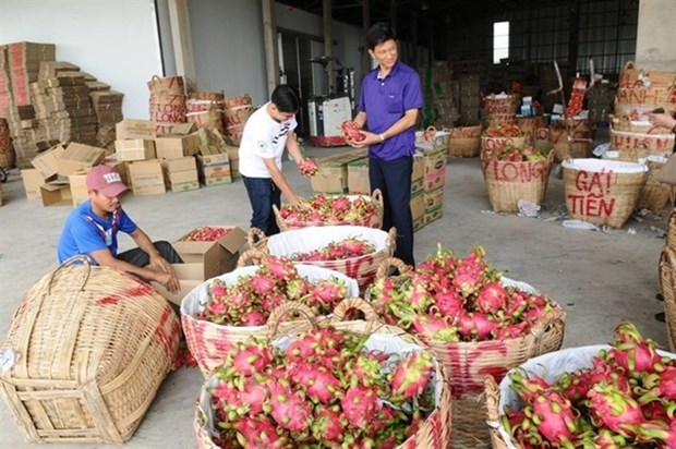Vietnam likely to be affected by RoK's tougher pesticide rules hinh anh 1