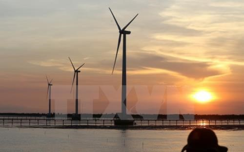 Quang Tri attracts strategic investors to wind power projects hinh anh 1