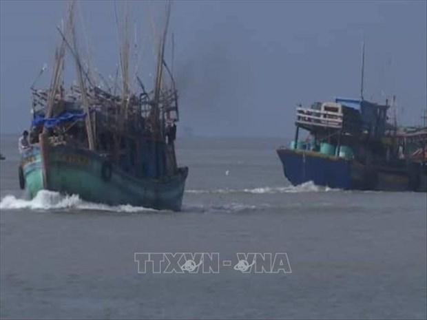 Storm Pabuk sinks many vessels in southern province hinh anh 1