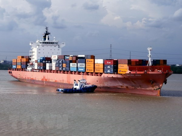 Vietnam likely to benefit much from container shipping hinh anh 1