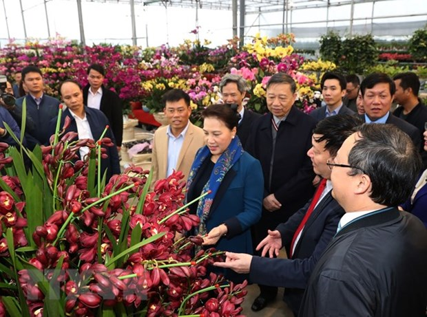 NA Chairwoman visits new-style rural communes in Hung Yen province hinh anh 1