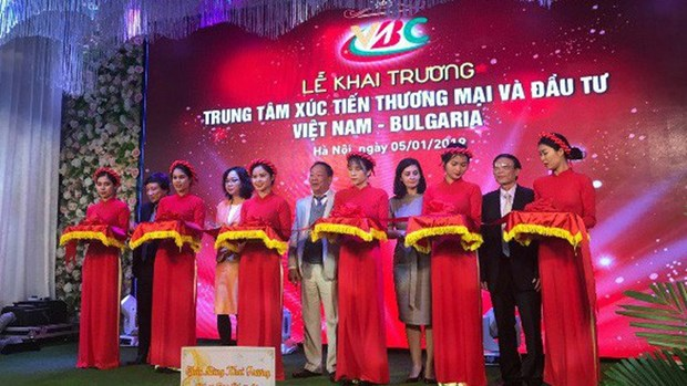 Vietnam, Bulgaria boost trade, investment hinh anh 1