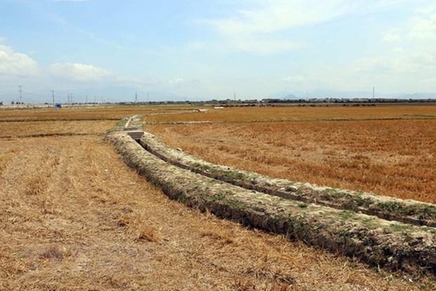 Vietnam, Japan hold fifth environmental policy dialogue hinh anh 1
