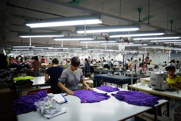 Ministry submits private enterprise development plan hinh anh 1