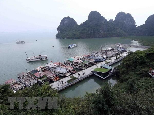 Quang Ninh strives to become regional high-quality services centre hinh anh 1