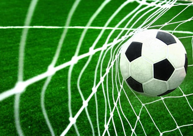 RoK, Vietnam lawmakers to hold first friendly football match hinh anh 1