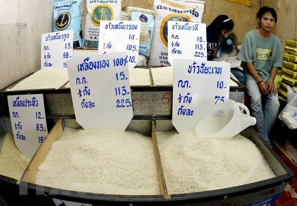Thailand looks to long-term rice development policy hinh anh 1