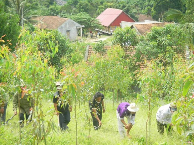 UN programme benefits over 6,000 locals in Lao Cai hinh anh 1