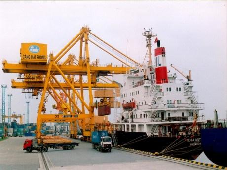 Vietnam-India trade hits 10.69 billion USD in 2018 hinh anh 1