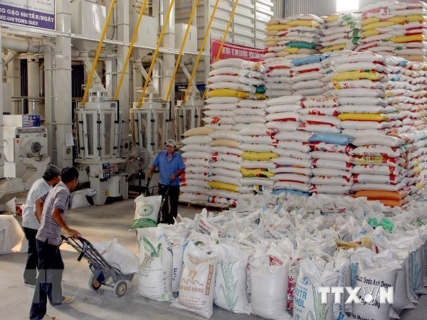 Vietnam-Africa trade reaches 6.6 billion USD in 2018 hinh anh 1