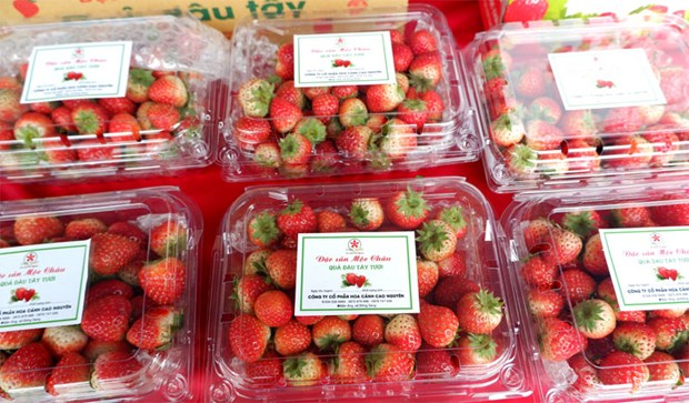 Son La strawberry, farm produce week opens in Hanoi hinh anh 1