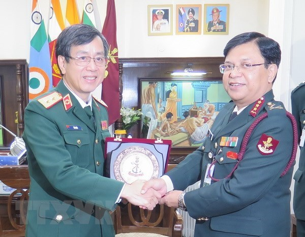 India ready to cooperate with Vietnam in medical sectors hinh anh 1