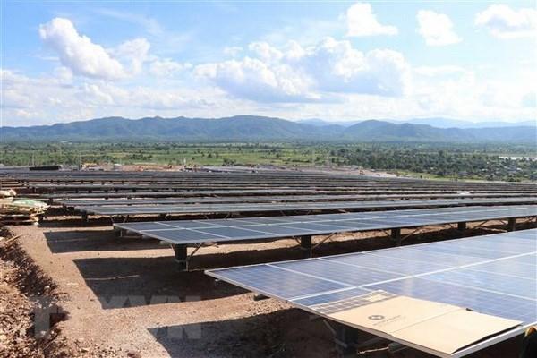 Solar plants face a consumption crisis hinh anh 1