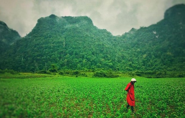 Quang Binh to introduce local images to Hollywood hinh anh 1