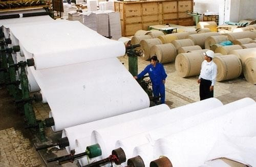 State-owned paper producer surpasses yearly revenue target hinh anh 1
