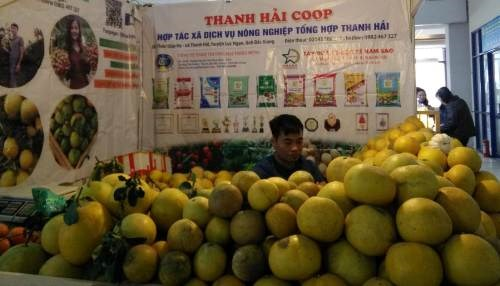 Local staples offered at Hanoi's spring fair 2019 hinh anh 1