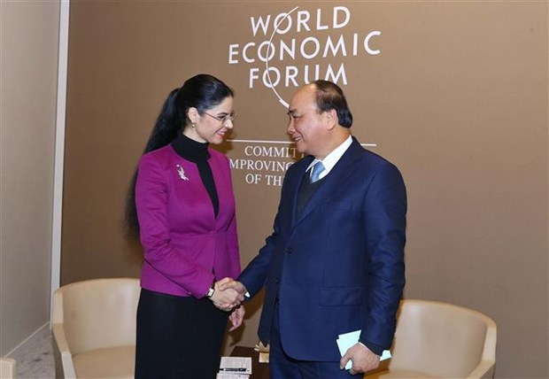 Prime Minister meets with foreign leaders in Davos hinh anh 3