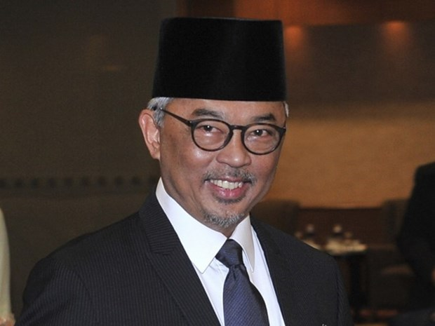 Sultan of Pahang state becomes new king of Malaysia hinh anh 1
