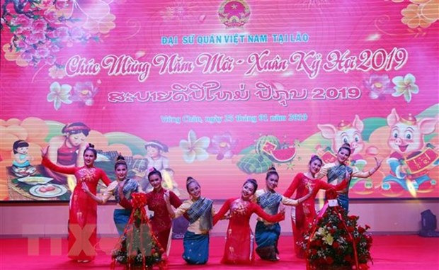 Vietnam Embassy in Laos welcomes Lunar New Year hinh anh 1