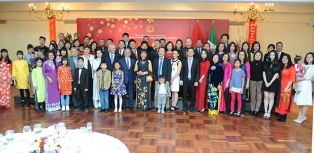 Vietnamese communities around the world celebrate Tet hinh anh 1