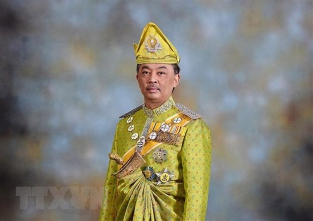Party-State leader congratulates new Malaysian King hinh anh 1