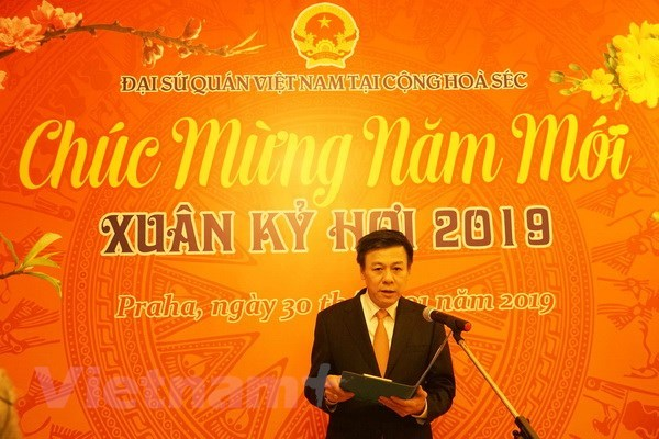 Vietnamese expats in Czech Republic, Algeria celebrate Tet festival hinh anh 1