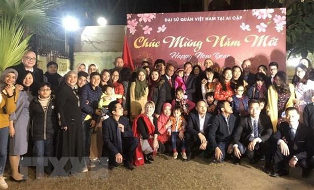 Ambassadors meet with overseas Vietnamese ahead of Tet hinh anh 1