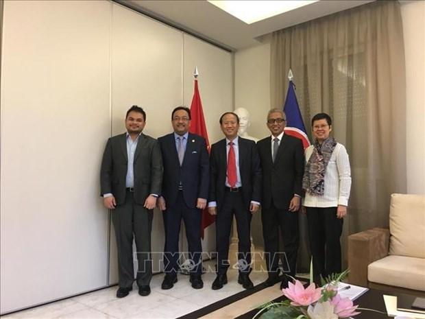 Vietnam undertakes Chair of ASEAN Committee in Madrid hinh anh 1